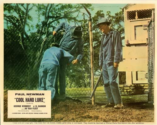 COOL HAND LUKE MOVIE LOBBY CARDS POSTER Paul Newman