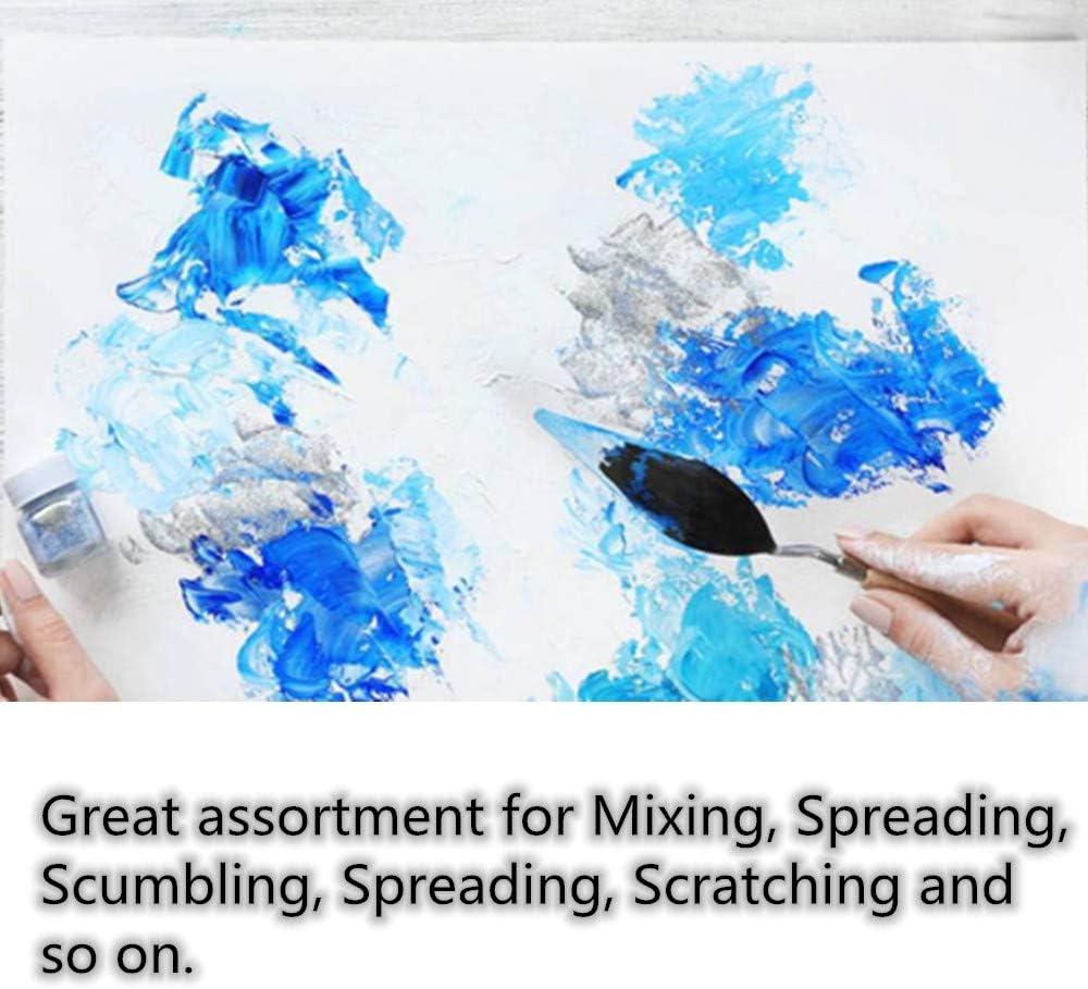 FLZONE Cuchillos de Paletas Acero Inoxidable,5 Piezas Set de Pintura Acr/ílica Pintura Raspador para Pintura al /óleo del Artista Pintura Acr/ílica