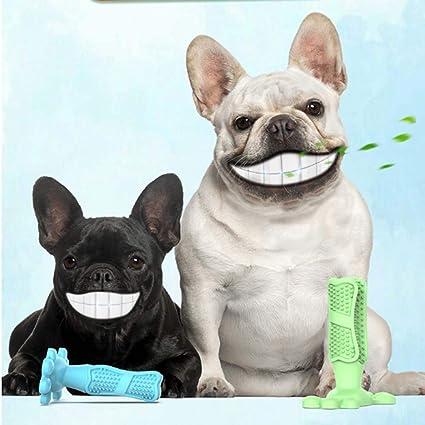 Ecent Cepillos de Dientes Caninos Juguetes Masticar Limpieza de ...