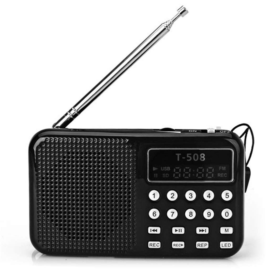 ZWS Radio FM Radio Portable Digital Audio Music Player Speaker LED Support TF Card USB Disk Current Affairs Information (Color : Black)