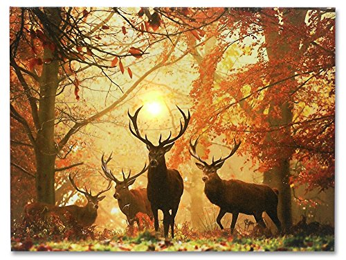 Deer Picture - LED Big Buck Wrapped Canvas Print - White Tail Deer in Autumn Forest - Wildlife Wall Decoration - Deer Decor - Glowing Canvas Picture - 16x12 Inch - Bedroom Cabin