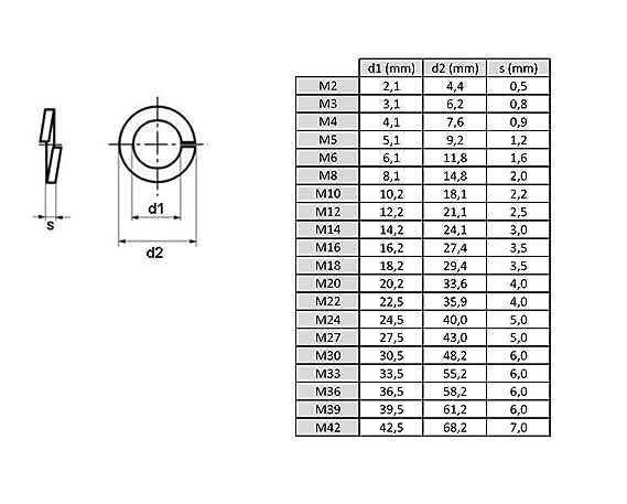 x100 Spiralf/örmige Federscheiben Federring/DIN 127 Rostfreistahl A2 V2A M10