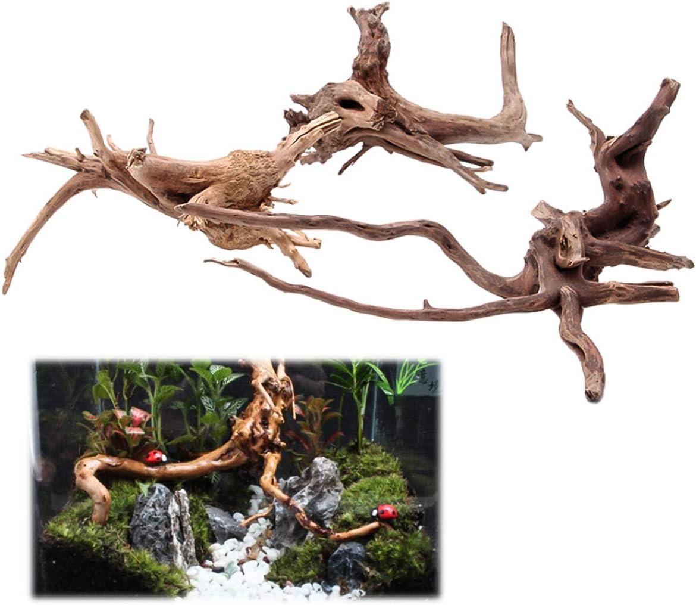 Haokaini Natural Driftwood for Aquarium Aquarium Driftwood Assorted Branches Reptile Ornament Dead Wood Tree Root Decor for Fish Tank