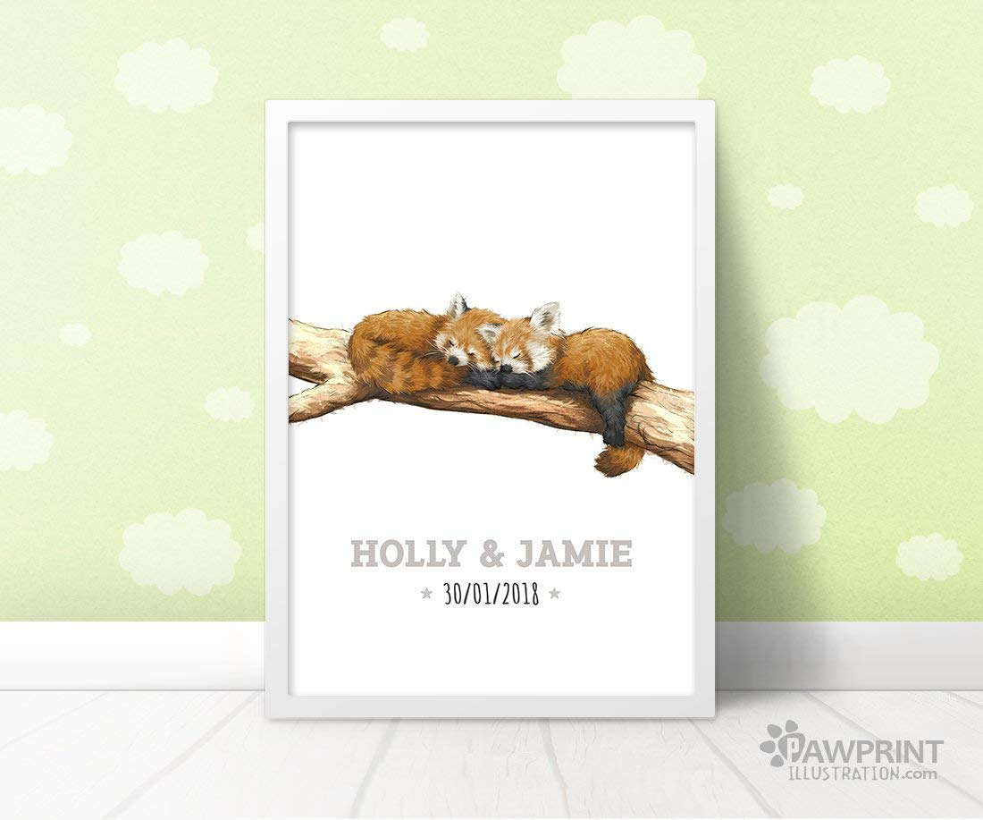 Twin Red Pandas Baby Name Nursery Print by Pawprint Illustration Custom New Baby Twins Gift Frame not included