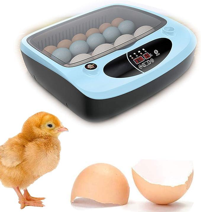 Incubadora Doméstica Pequeña, Incubadora Totalmente Automática, Doble Uso Eléctrico, Incubadora Inteligente De Pollos, 12 Incubadoras