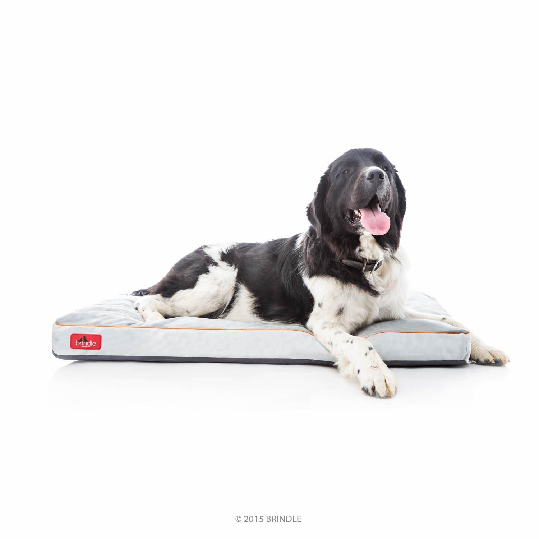 Brindle Cama de Espuma viscoelástica Brillante para Perro con Funda extraíble Lavable - 116,84 cm x 71,12 cm - Piedra: Amazon.es: Productos para mascotas