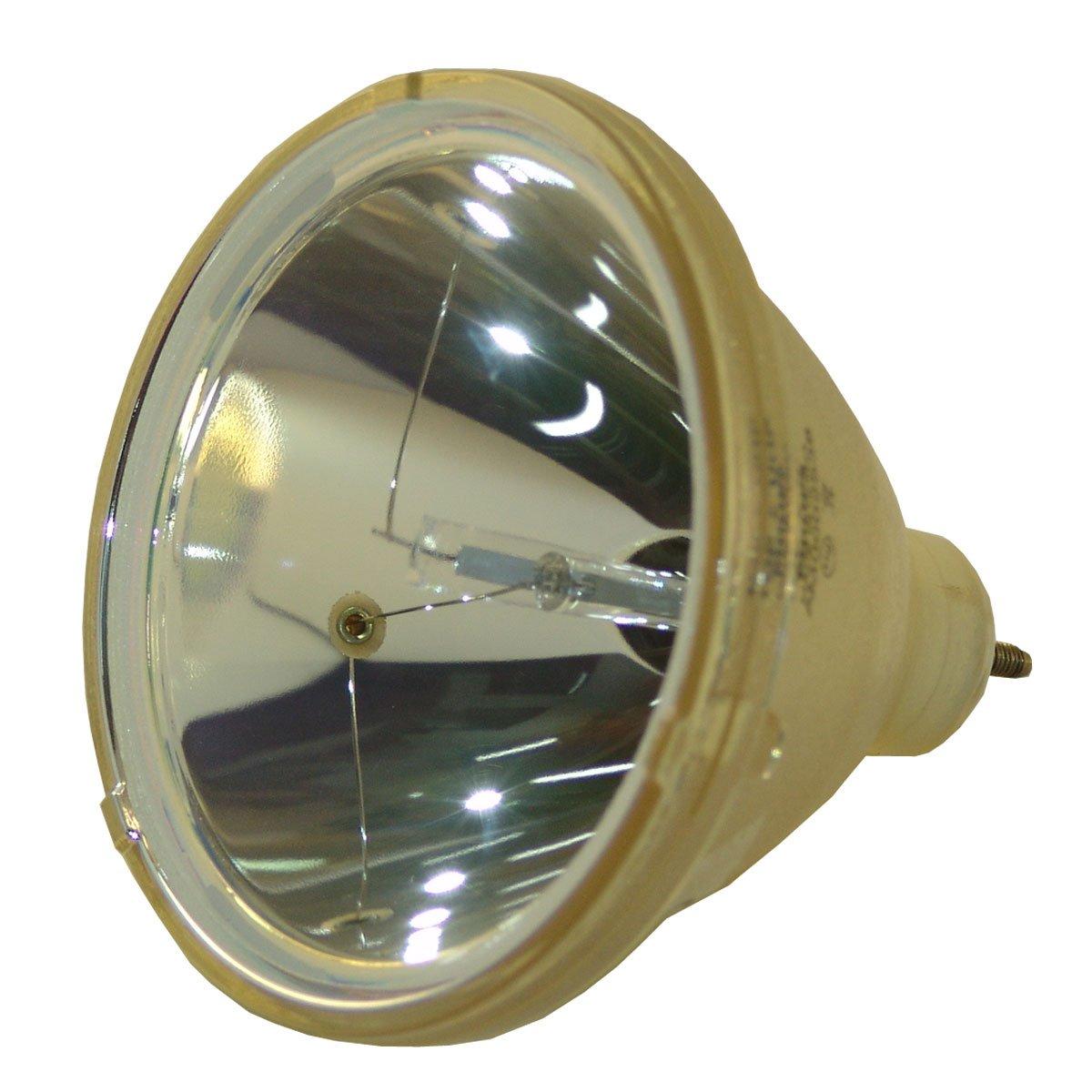 Lutema OEM交換用ランプ ハウジング/電球付き パナソニック ET-SLMP29用 Platinum (Brighter/Durable) Platinum (Brighter/Durable) Lamp Only B07KTJSHFL