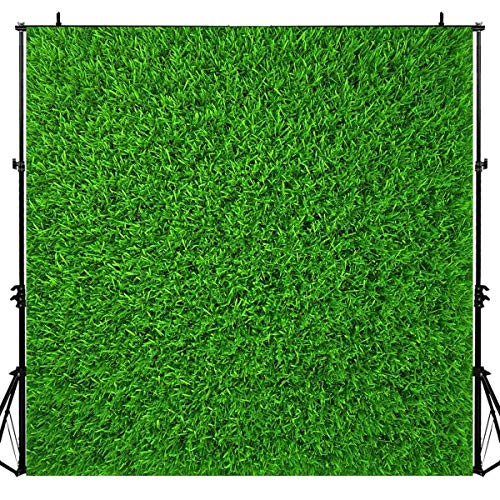 Grass Backdrops for Party,Spring Green Nature Lawn Backgrounds,Baby Shower Birthday Party Newborn Newlyweds Session 6x6FT LUZZ440
