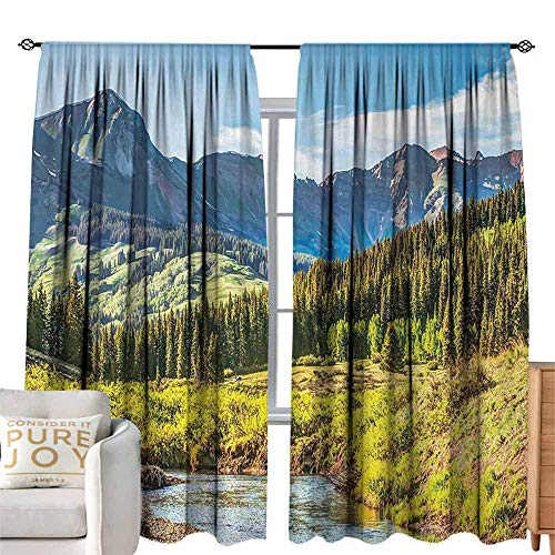 (DILITECK Decorative Curtain Landscape Mountain Vista Thick Forest Trees Mountain Flowing River Grass Cloudy Sky Valley Multi-Functional Curtain W108 xL96 Multicolor)