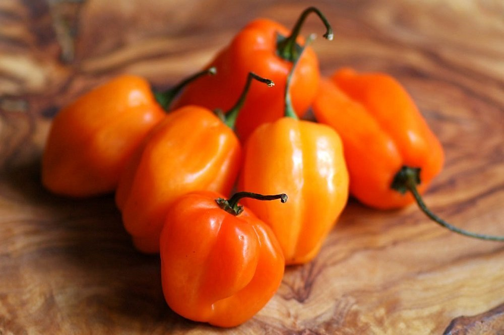 recipe: how many habaneros in a pound [29]