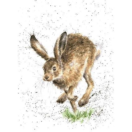 Amazon wrendale designs greeting card the bounder rabbit wrendale designs greeting card the bounder rabbit m4hsunfo