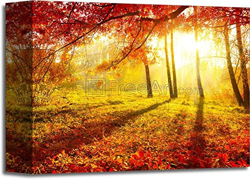 Autumnal Park. Autumn Trees And Leaves. Fall Paper Print Wall Art Gallery Wrapped Canvas Art (8in. x 10in.) Barewalls Leaf