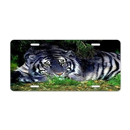BENGAL CAT BLACK ANIMAL Metal License Plate Frame Tag Holder Two Holes