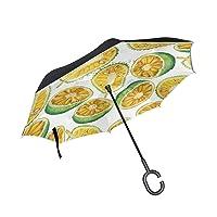SHNUFHBD Inverted Umbrella Watercolor Breadfruit and Jackfruit Umbrella Windproof...