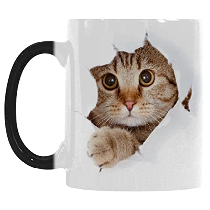 amazon com interestprint funny cat looking from the inside i love