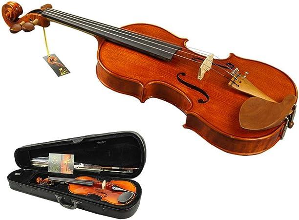 Varie dimensioni Violino acustico con custodia rigida in