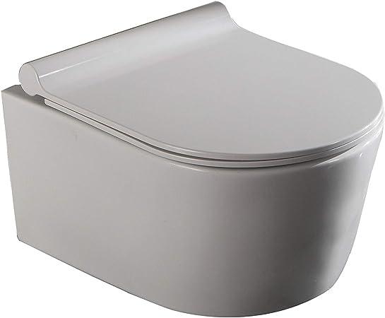 LUX de Aqua 2197 50 cm profundidad pared WC cisterna inodoro asiento de cierre sin bordes, color blanco: Amazon.es: Bricolaje y herramientas