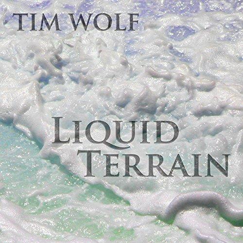 Liquid Terrain: Solo Recordings (2004-2008) ()