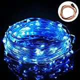 BIENNA String Lights, 100 LED 33ft /10M USB Powered Copper Wire Starry Fairy Weatherproof Lighting for Outdoor Bedroom Indoor Patio Home House Cafe Christmas Xmas Tree Holiday Wedding Party-Blue