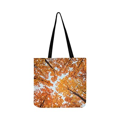 4696d76da0eb Amazon.com  Autumn Landscape Bright Colored Oak Leaves Canvas Tote ...