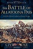 The Battle of Allatoona Pass: Civil War Skirmish in Bartow County, Georgia (Civil War Series)