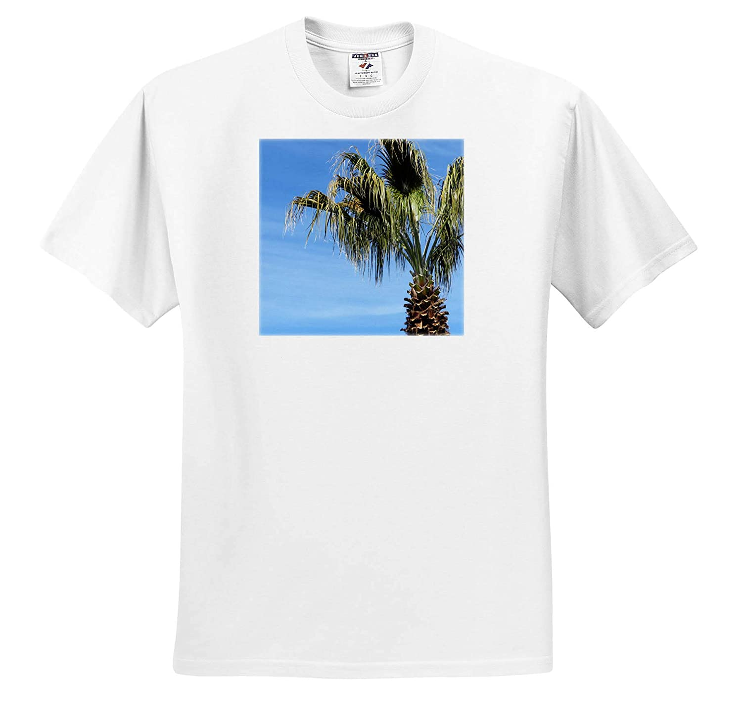 Adult T-Shirt XL 3dRose Jos Fauxtographee- Palm Tree A Palm Tree at The Right top of Photo on a Blue Sky ts/_319615