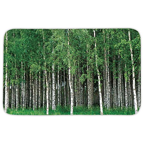 Rectangular Area Rug Mat Rug,Farm House Decor,Swedish Summer Landscape with Birch Trees and Trunks Northern Rural Seasonal Scenery,Green Grey,Home Decor Mat with Non Slip Backing by iPrint