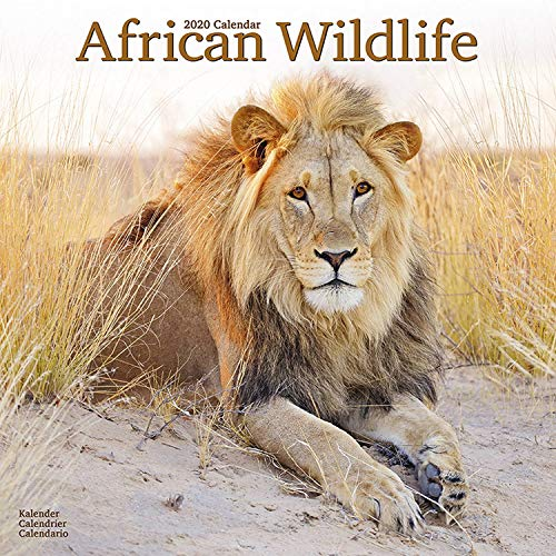 Wildlife Calendar - 2020