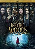 DVD : Into The Woods