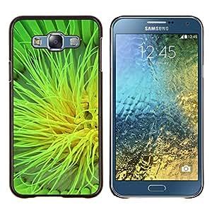 For Samsung Galaxy E7 E700 Case , Planta Naturaleza Forrest Flor 105- Diseño Patrón Teléfono Caso Cubierta Case Bumper Duro Protección Case Cover Funda