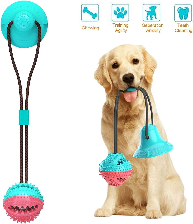 heekpek Juguetes Interactivos para Perros Bolas de Juguete de Perro de Ventosa para Rechinar los Dientes Limpiar los Dientes y Tirar Juguete de Goma Masticar Mascotas Pelota Antiestres Perros (Azul): Amazon.es: Productos