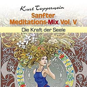 Die Kraft der Seele (Sanfter Meditations-Mix Vol. V) Hörbuch