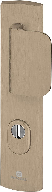 Bricard 9920091 - Juego de mangos blindados sobre placa EMUST, cojinete de caballete + alerón para puerta de entrada (para cilindro europeo), color ámbar