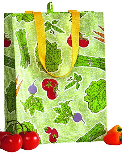 DII Reusable Shopping Bag, For Farmers Markets, Grocery Shop