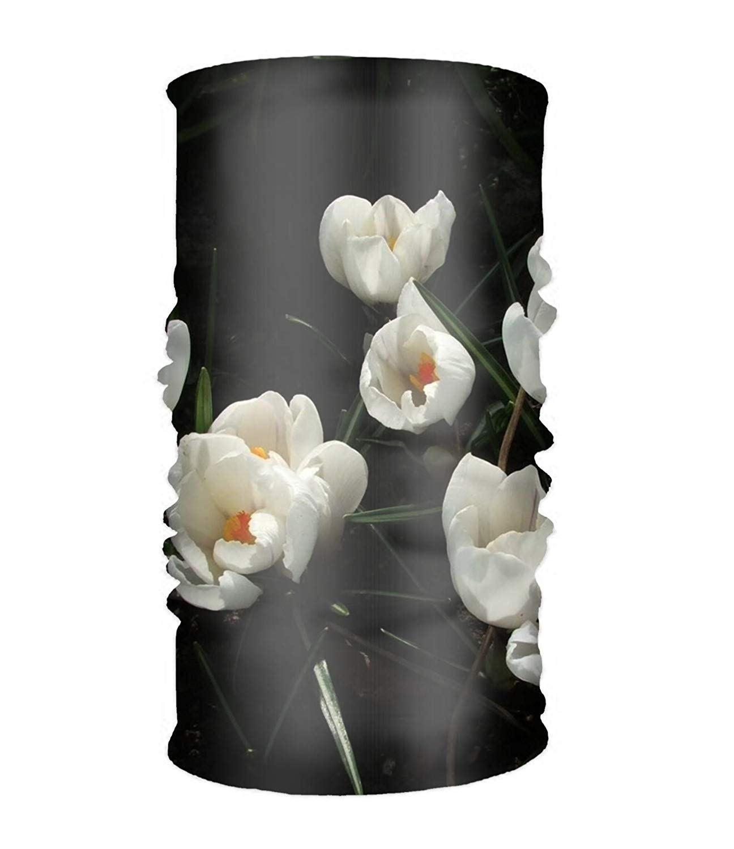 No Soy Como Tu Balaclavas Multifunctional Headwear Yoga Sports Stretchable Headband Earth Flowers Daisy Grass Spring Bandana Scarf