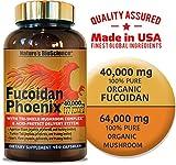 FUCOIDAN Phoenix by Nature's BioScience : 40,000 mg of Pure Fucoidan + 64,000 mg of Pure Mushroom For Sale