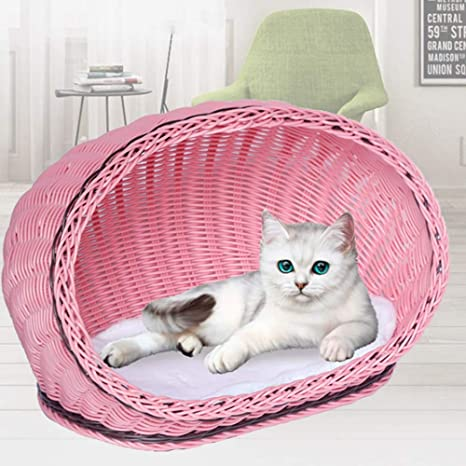 Cat House Cat House Pet Supplies Best Choice Product Cat Litter Pet Outdoor Or Indoor Cat Litter Cat Like House Cat Play Sleeping Cat Bed Color Pink Size 39x26x19cm Amazon Ca