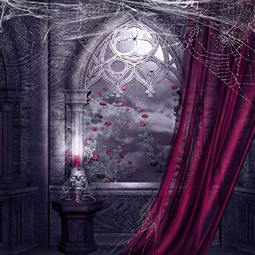 [GladsBuy Scary House 10' x 10' Computer Printed Photography Backdrop Halloween Theme Background] (Halloween 10)