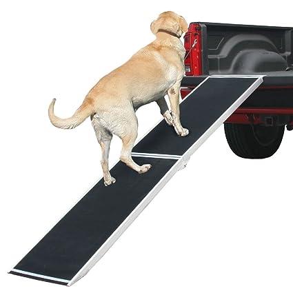 amazon dog ramp