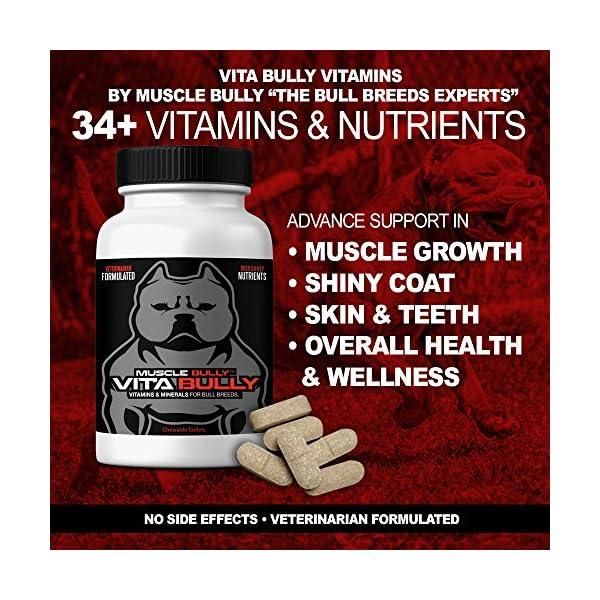 Vita Bully Vitamins for Bully Breeds: Pit Bulls, American Bullies, Exotic Bullies, Bulldogs, Pocket Bullies, Made in The USA. (60 Vitamins) 4