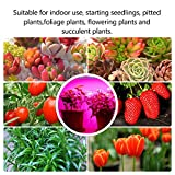 Mosthink LED Grow Light for Indoor Plants, 20W