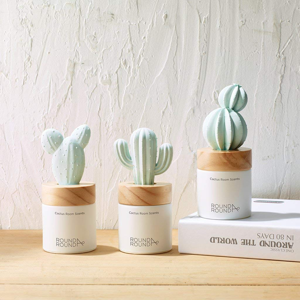 ROUND A'ROUND Cactus Room Scents 100ml / Gypsum Reed Fragrance Diffuser for Fragrant Homes, Rooms, Office, Bathroom, Living Room, Great Home Fragrance Gift (Goldenbarrel Cactus) by ROUND A'ROUND (Image #6)