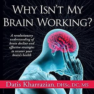 Why Isn't My Brain Working? Audiobook