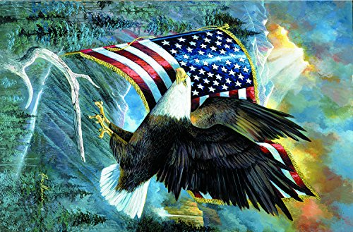 American Pride 35 LARGE Piece Jigsaw Puzzle by SunsOut