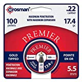 Sporting Goods : Crosman GTP22 Gold Tip Pellet 0.22 cal (100 ct)
