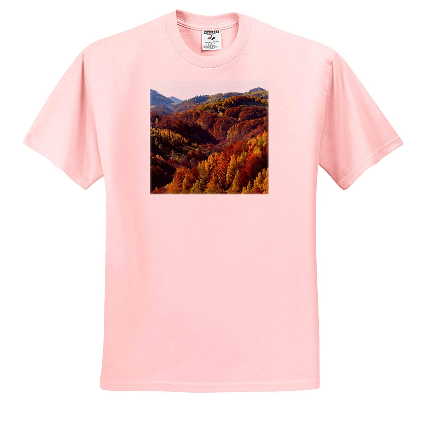 ts/_313841 - Adult T-Shirt XL Romania Transylvania 3dRose Danita Delimont Fall Colors Romania Carpathian Mountains