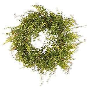 National Tree Company Garden Accents 22 in. Hotag/Berry Wreath - Green 9