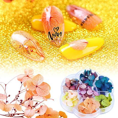 DriedFlowers NailArt DecalsStickers 3dNailArtSupplies FallNail Decals Colorful Blooming Everlasting Flower Gypsophila Petals for Tips Manicure
