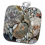 3dRose TDSwhite – Rock Photos - Pretty Rock Garden - 8x8 Potholder (phl_281909_1)