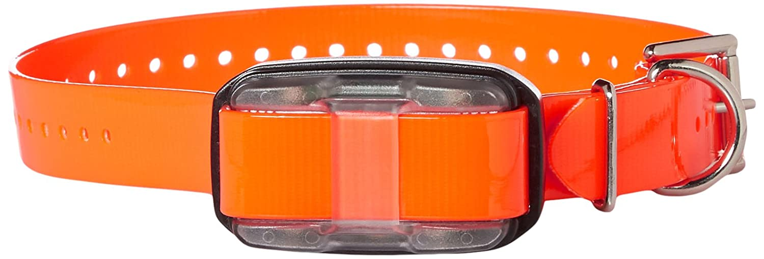 Dogtra Edge Receiver Orange